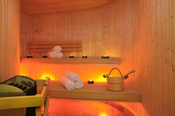 52 Dry Heat Home Sauna Designs Photos