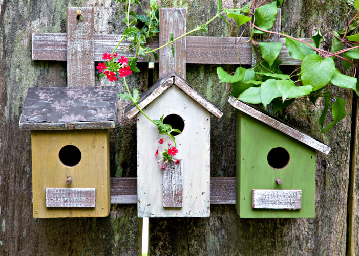 78 Decorative Painted Outdoor amp Wooden Bird Houses PHOTOS