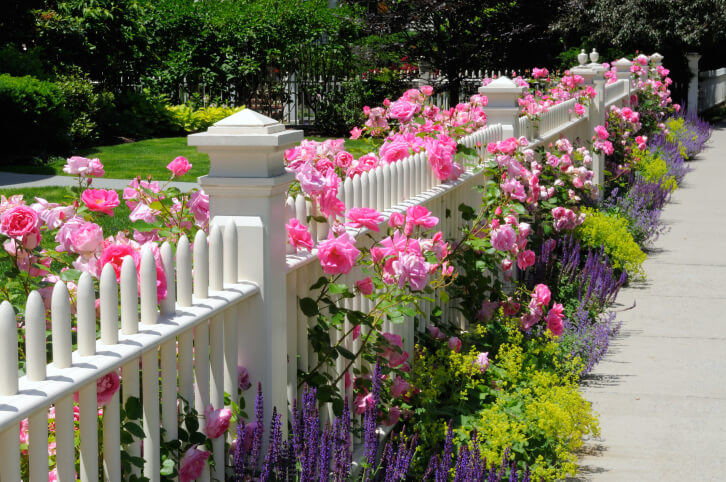 75 fence designs and ideas backyard front yard - Mixed style gardens ...
