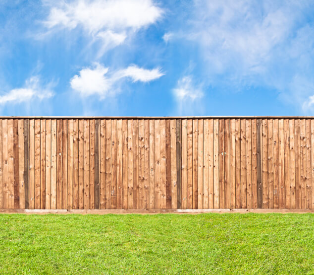 75 fence designs and ideas backyard front yard for Natural privacy fence