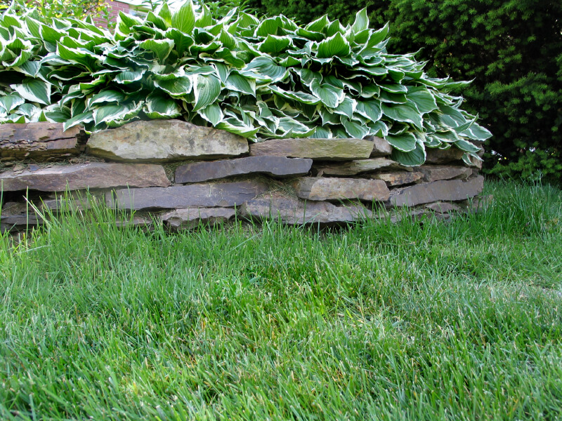 Landscaping With Slate Rock : Thin slate stones stacked create a natural looking simple barrier
