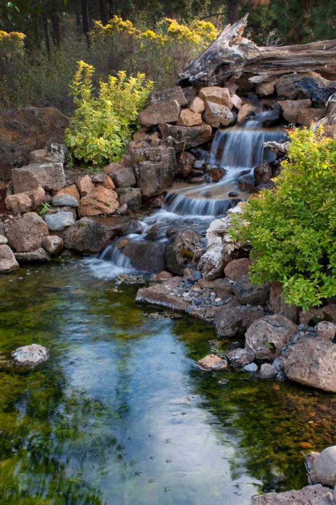 38 Backyard Pond Ideas & Designs (Pictures) - Décoration ...