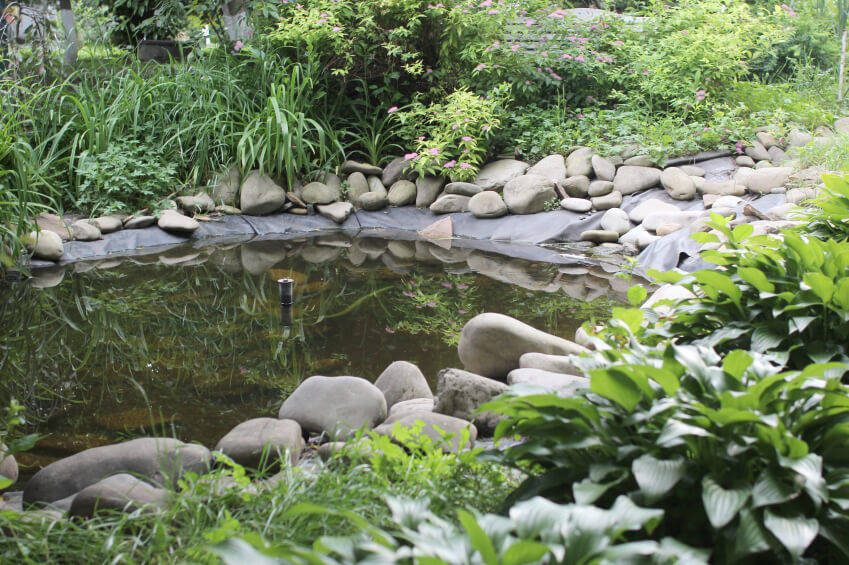 37 backyard pond ideas designs pictures for Small pond liner