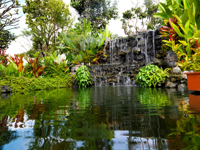50 pictures of backyard garden waterfalls ideas designs for Large pond plants