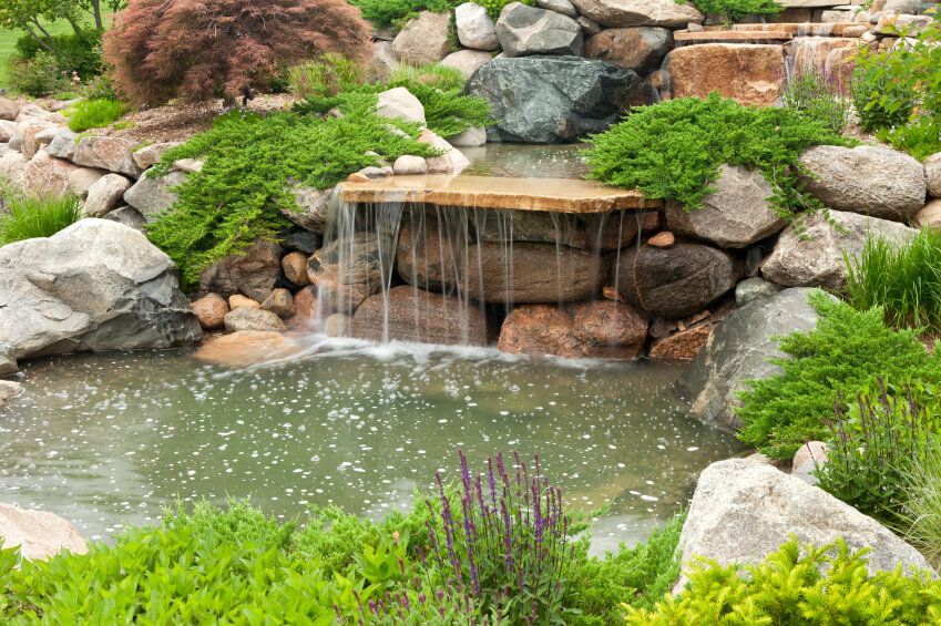 50 pictures of backyard garden waterfalls ideas designs for Simple backyard ponds