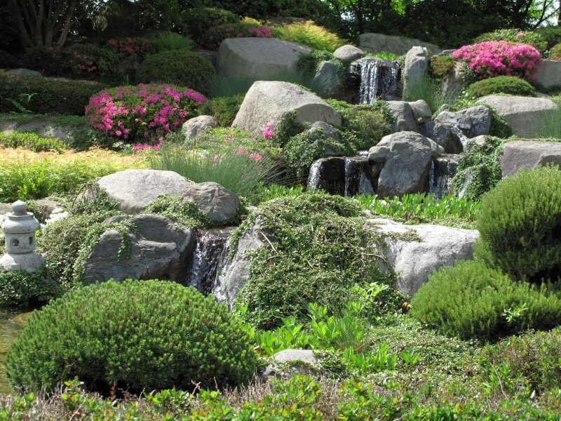 a stream with multiple waterfalls rolling through a japanese zen garden large flower bushes dot