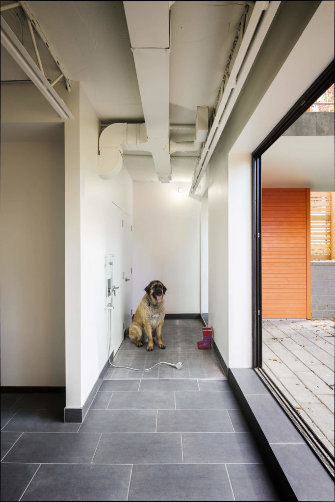 The lower level features a unique mud room space for the transition from outdoors to inside. The family dog is enjoying the built-in shower facilities.