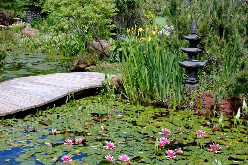 49 backyard garden bridge ideas and designs photos for Simple japanese garden