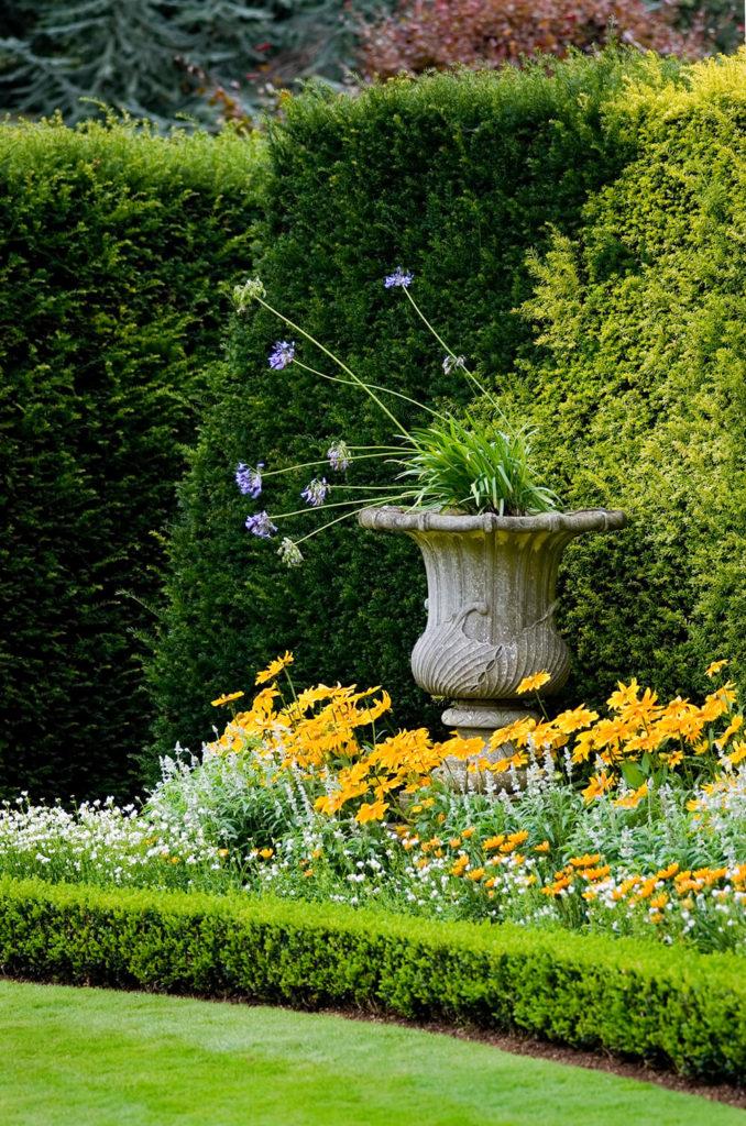 41 incredible garden hedge ideas for your yard photos - Garden border shape ideas ...