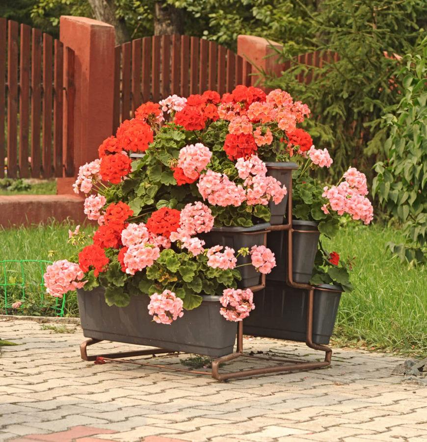25 unique flower planters and pots pictures - Care geraniums flourishing balcony porch ...