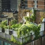 20 Relaxing Rooftop Garden Patios