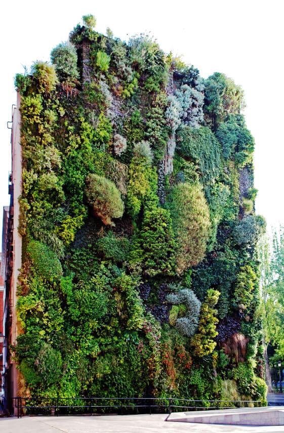 50 awesome vertical garden ideas photos. Black Bedroom Furniture Sets. Home Design Ideas