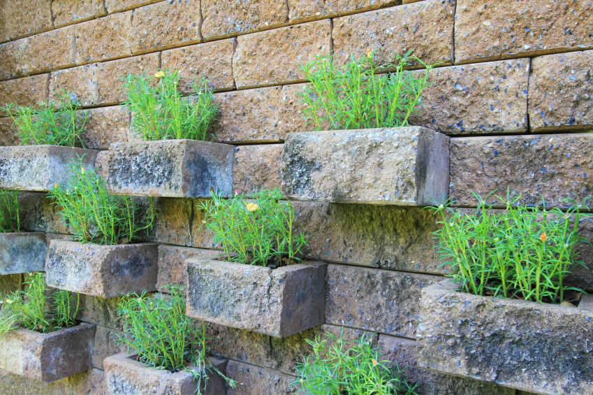 Vertical Gardening Ideas 25 mesmerizing vertical garden ideas that will refresh your decor homesthetics decor 10 Vertical Gardens Are Perfect Space Savers This Garden Used Carefully Spaced Brick Outcroppings To