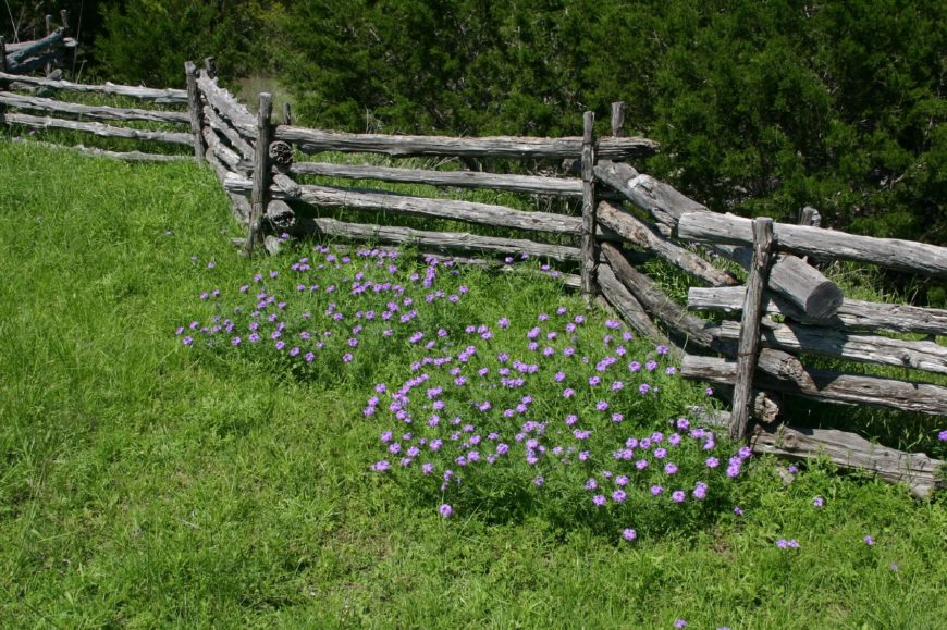 a more traditional split rail fence with the zigzagging silhouette this is