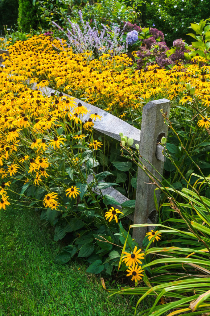 Split rail fence ideas for acreages and private homes