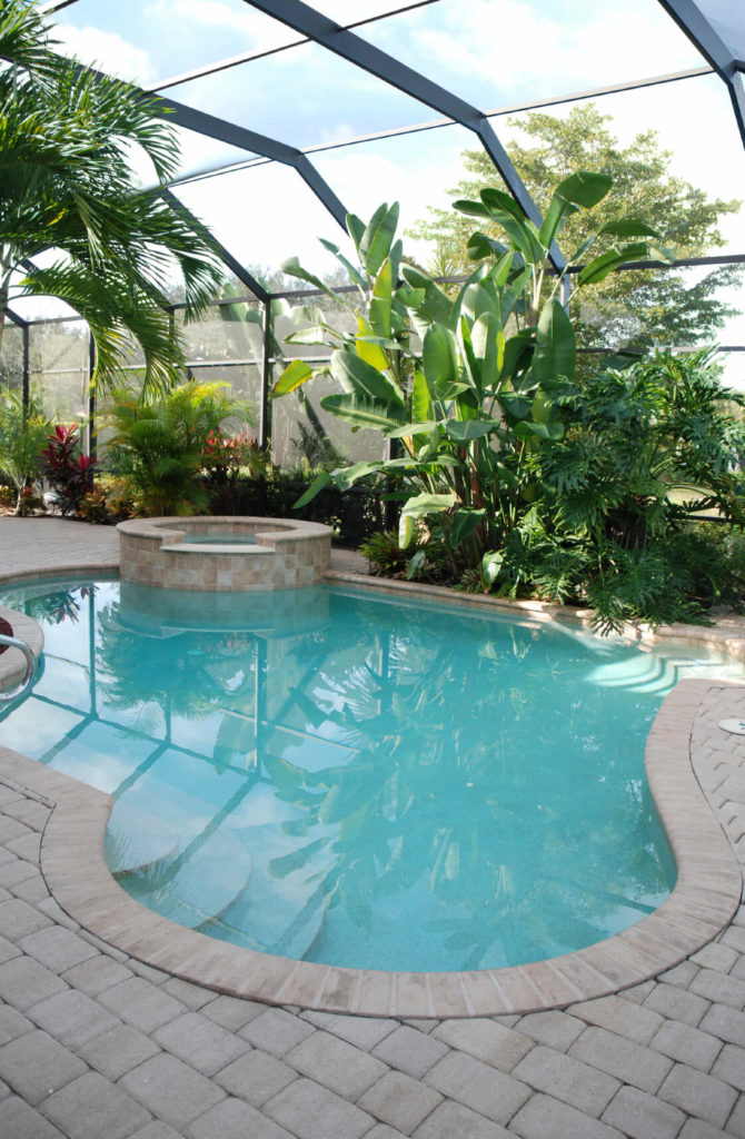73 swimming pool designs definitive guide for Greenhouse over swimming pool