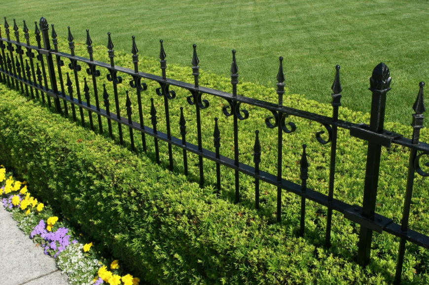 wrought iron fence installation. A Beautiful Wrought Iron Fence In Black With Manicured Hedge Growing Beneath And Small Installation