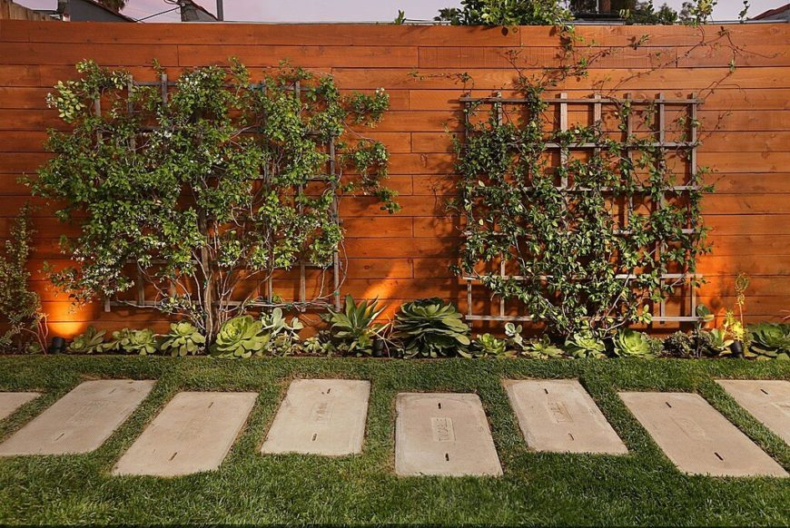 This tall, solid privacy fence is in a beautiful, rich stain and is punctuated with wooden trellises and a succulent planting bed.