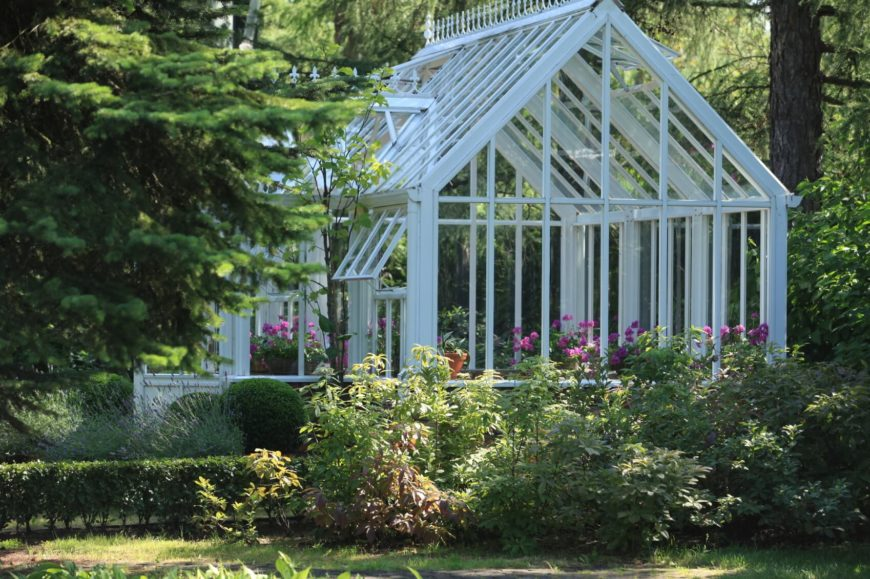 An enormous white greenhouse that is mainly used for cultivating brightly colored roses.