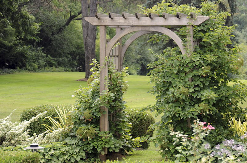 This is a much more simple design, with a top similar to a pergola. The sides are covered in dense vines that merge into the planting beds on either side.