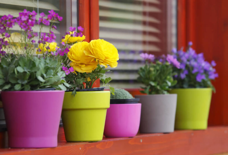 If you prefer a more simple approach, some ceramic, brightly colored planters might be just the ticket.