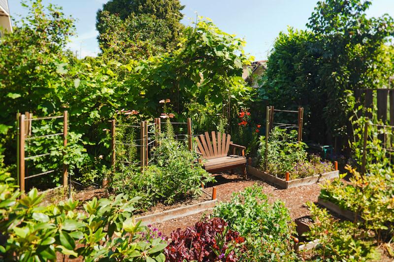 59 backyard ideas for beauty fun kids and entertaining for Fun vegetable garden ideas
