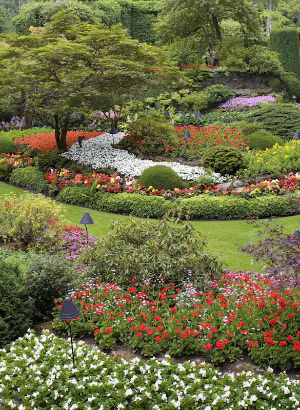 59 backyard ideas for beauty fun kids and entertaining for Ornamental trees for flower beds