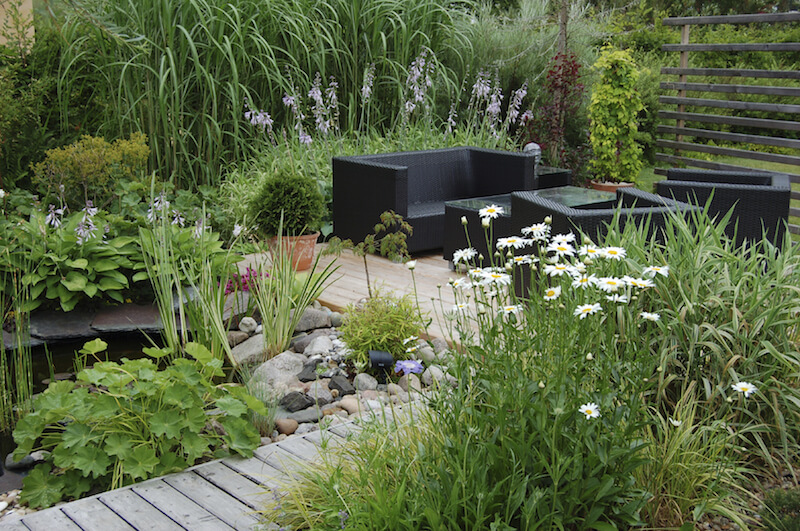 This contemporary garden is packed with dense grasses and plants, but not many flowers. The result is a mostly green, but relaxing garden with just a hint of fragrance.