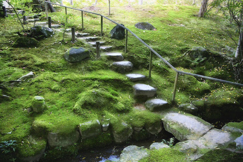 The rocky landscape of this garden is covered in moss with a few small trees. The stone steps and pathways are marked with a railing for stability.