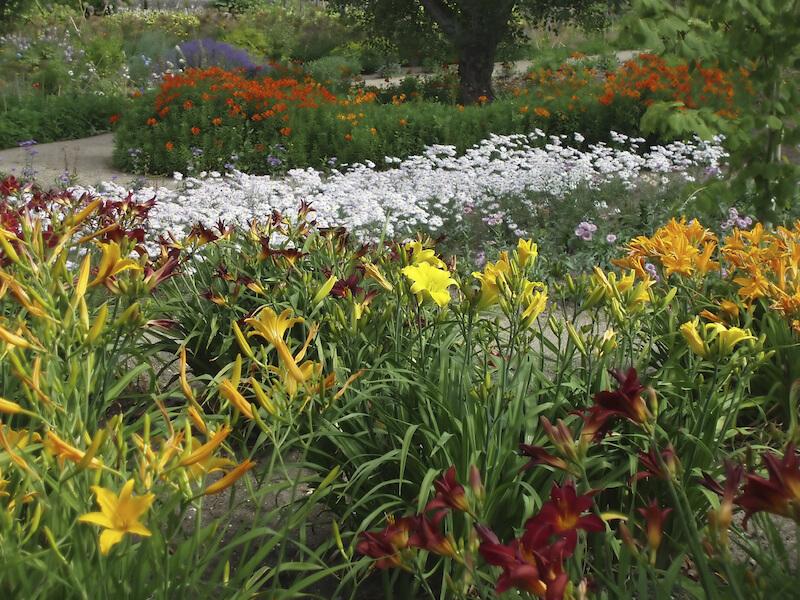 59 backyard ideas for beauty fun kids and entertaining for Perennial flower garden designs