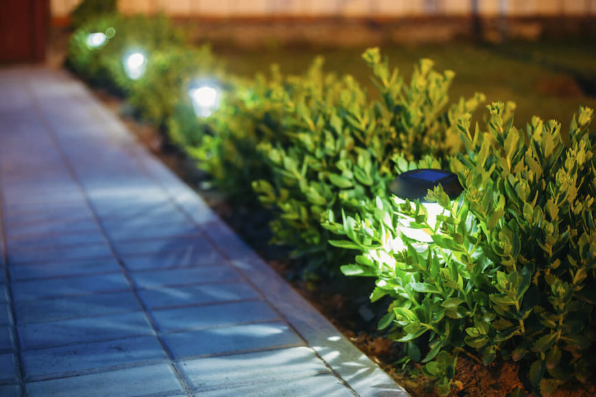 Small lights hidden in short hedges provide light along a walkway, illuminating the path through the yard. These are typically solar.