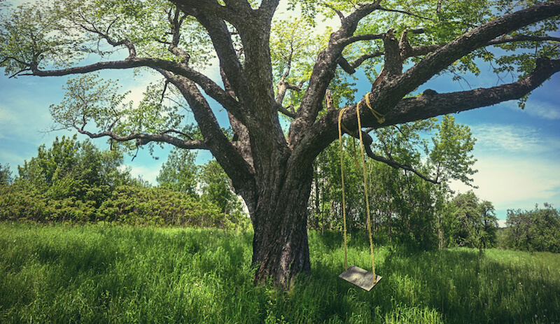 Rope swings, hung from a sturdy branch of a mature tree, are a classic way to swing while enjoying the summer breeze.