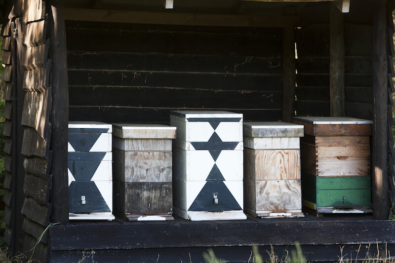 Another option is to have several bee boxes stored in an open shed, like this one. Decorate them as you please to suit your style and decor.