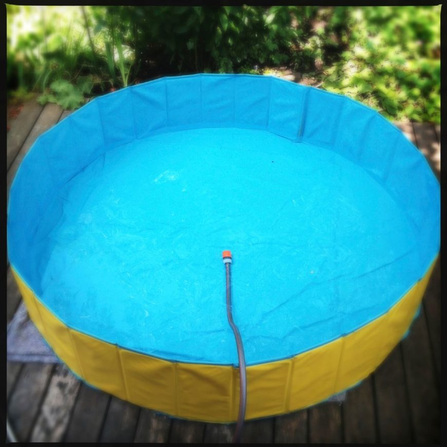 17 cool kids pools for Portable pool