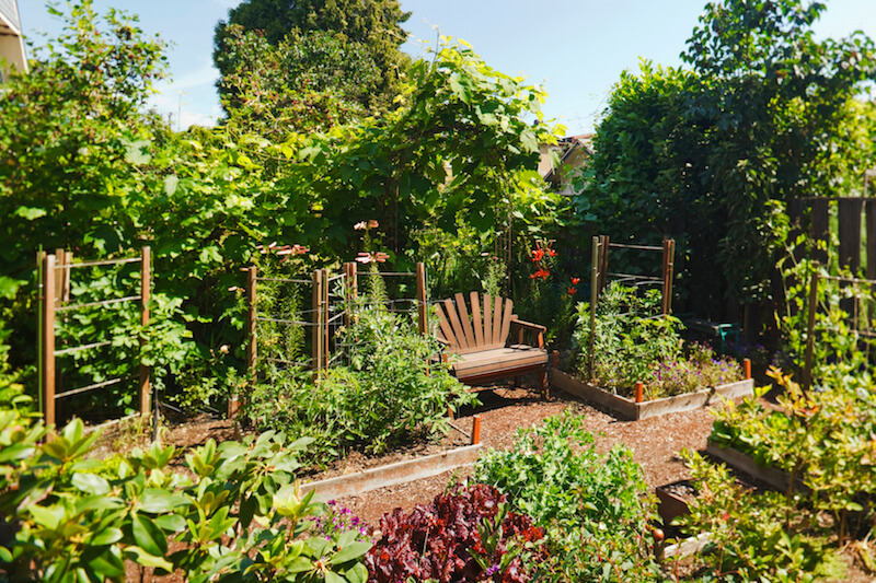 24 fantastic backyard vegetable garden ideas for Fruit and vegetable garden design