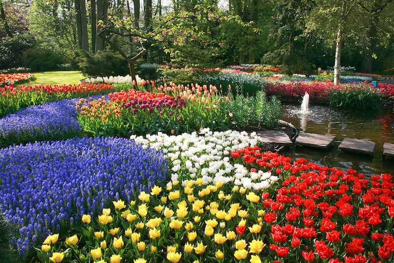 25 magical flower bed ideas and designs for Best plants for flower beds