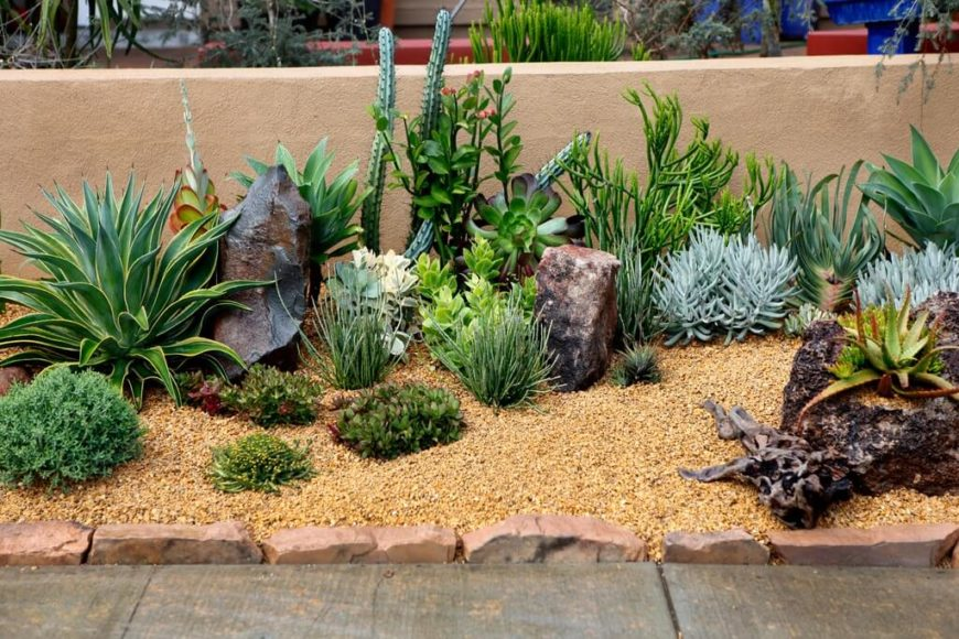 34 sharp cactus garden ideas for Cactus garden designs