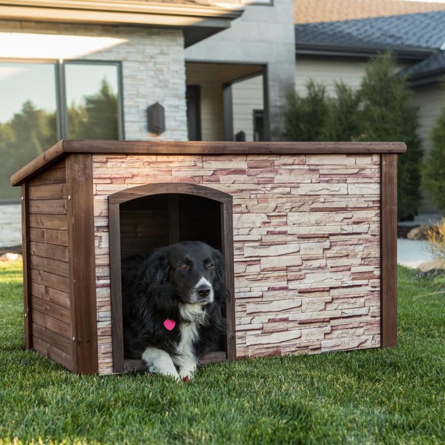 Diy Flat Roof Dog Kennel