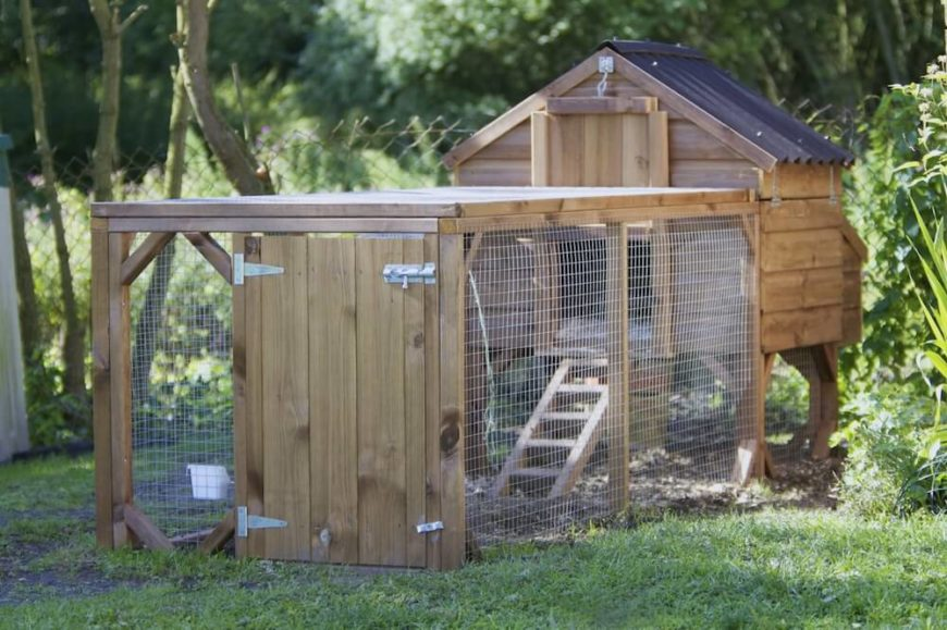 chickens to run in an enclosed protected space while the actual coop