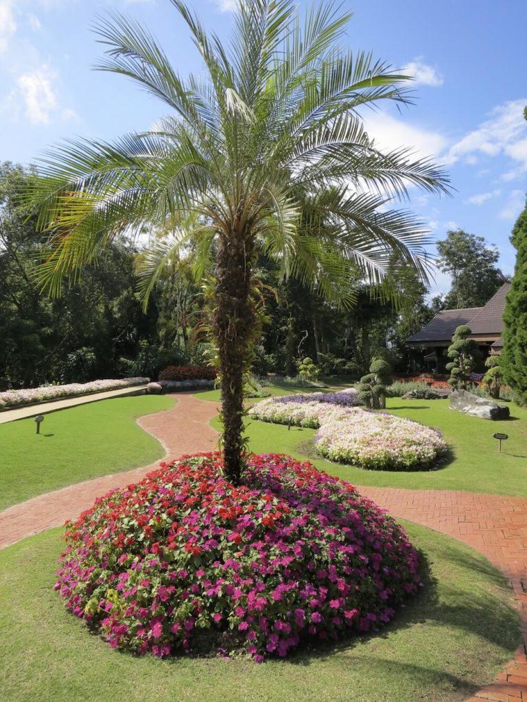 25+ Cozy Palm Tree Landscaping Ideas Photos - Landscape Ideas on Backyard Landscaping Ideas With Palm Trees id=78951