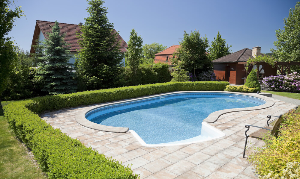 suburban backyard with kidney shaped pool with low hedge surrounding the brick patio