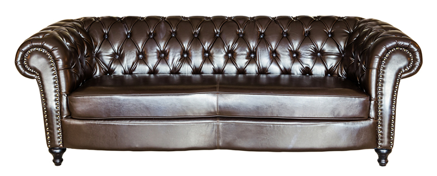 17 Types of Sofas& Couches Explained (WITH PICTURES)