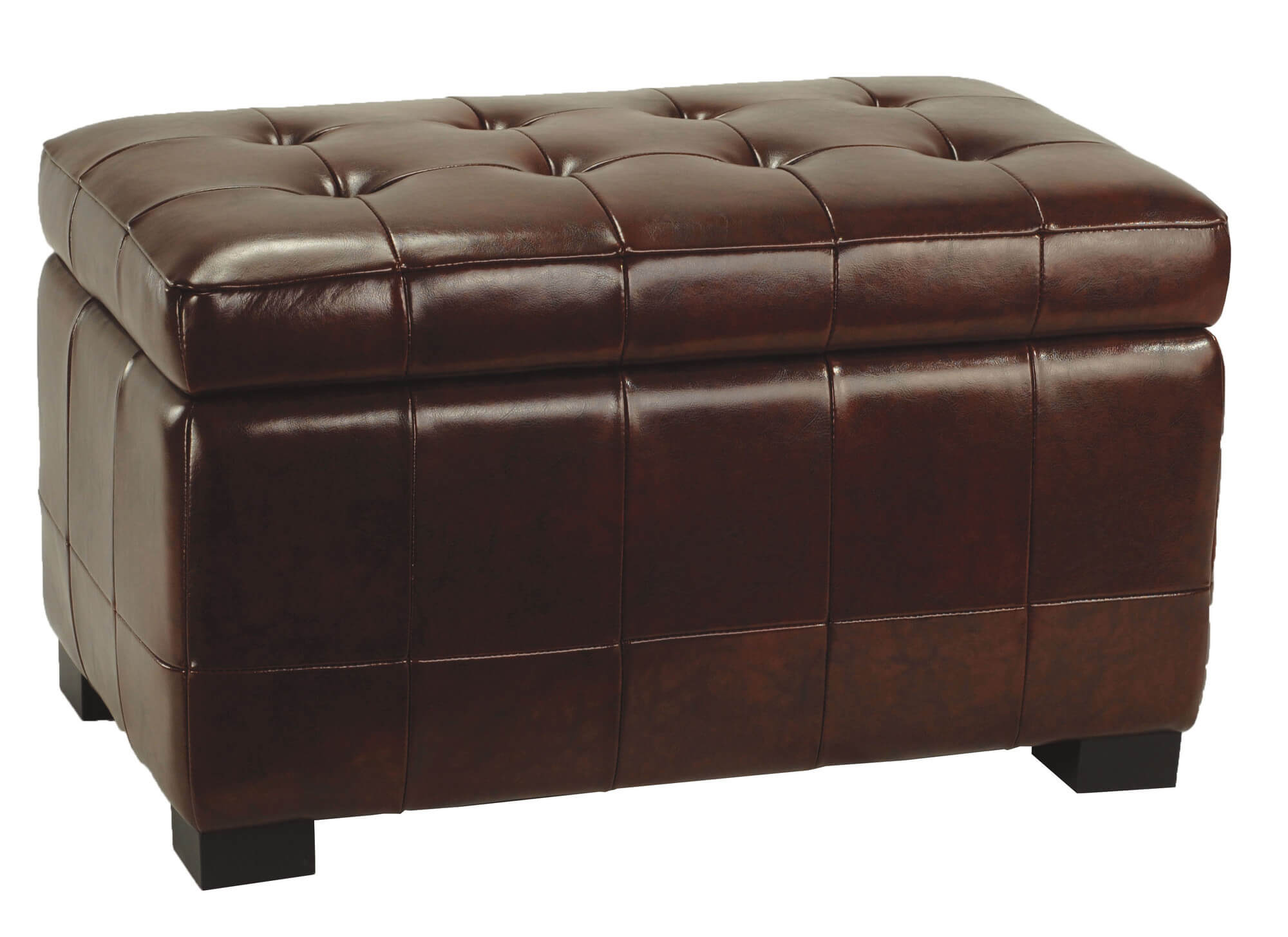 Large Beechwood Ottoman From Safavieh Is Clad In Leather And Features Hinged  Cushion Lid For Storage .