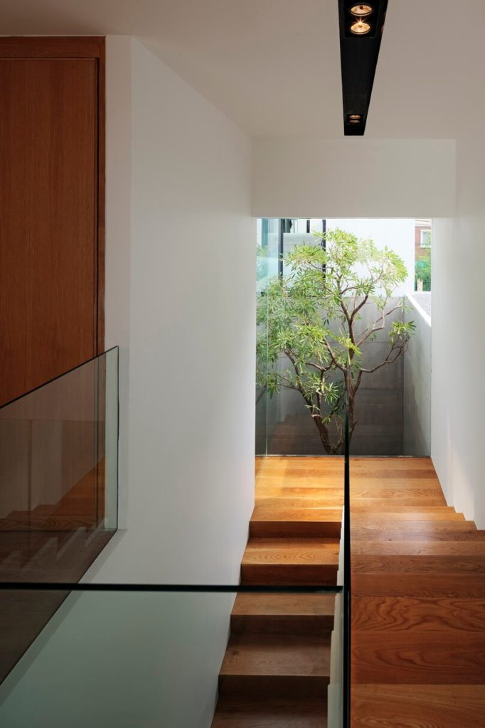 Looking down the lush, natural wood staircase, the small garden area appears to sprout from within the home.