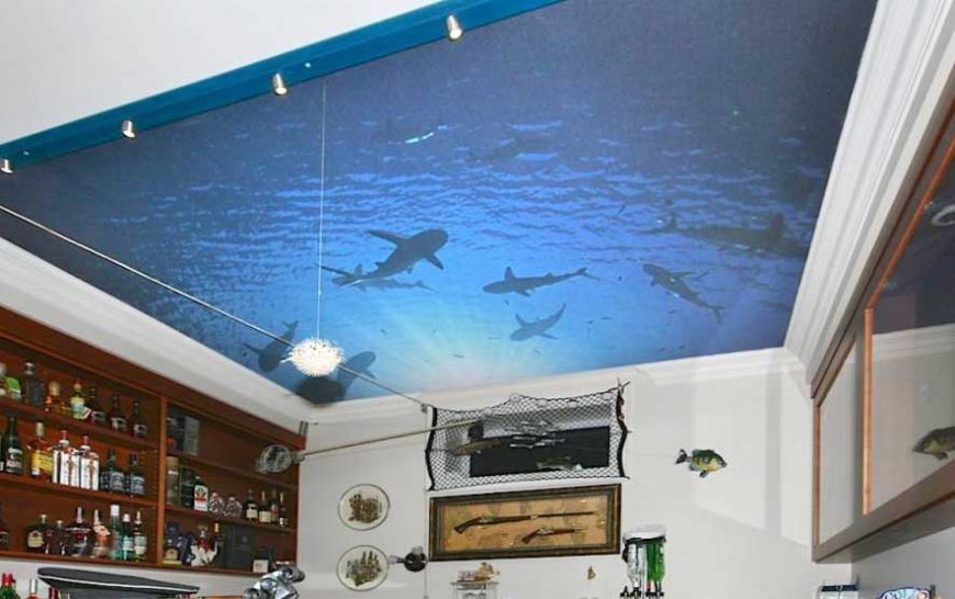 21 inspiring custom photo ceilings by ceiltrim inc for Fishing man cave