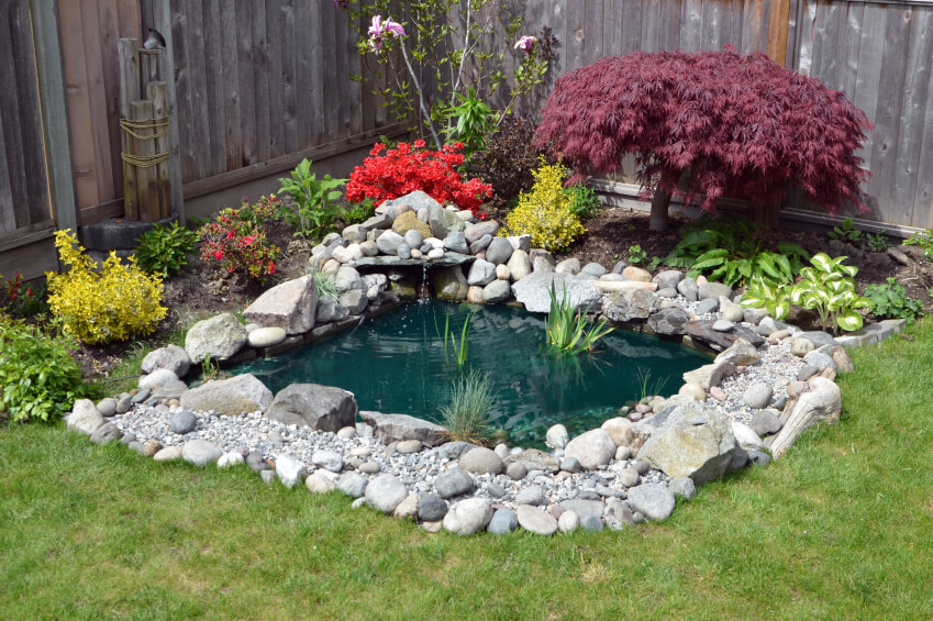 Superieur A Small Backyard Pond Surrounded By Stones And Ornamental Plants.