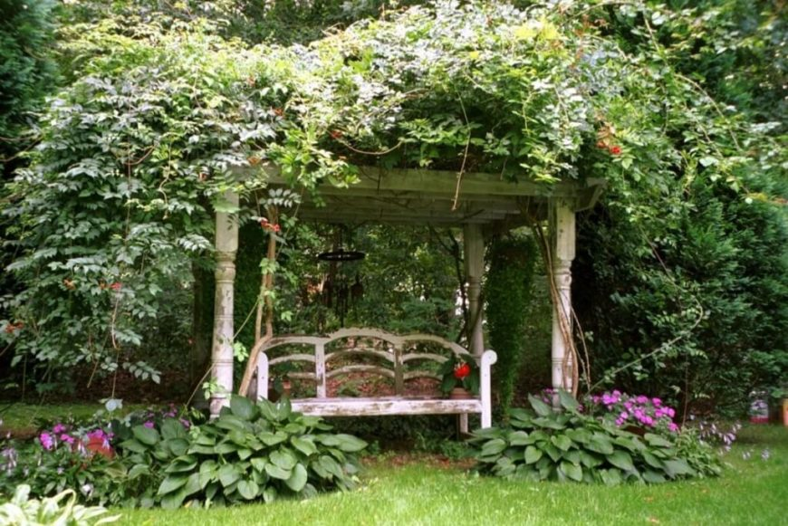 a peeling bench sits beneath a canopy of flowers vines and a weathered trellis