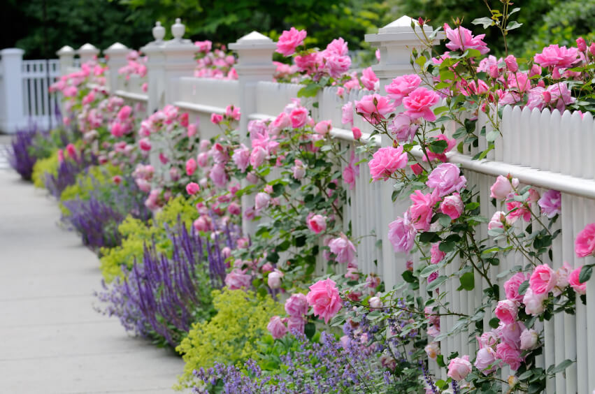 40 beautiful garden fence ideas - Beautiful Garden Plans