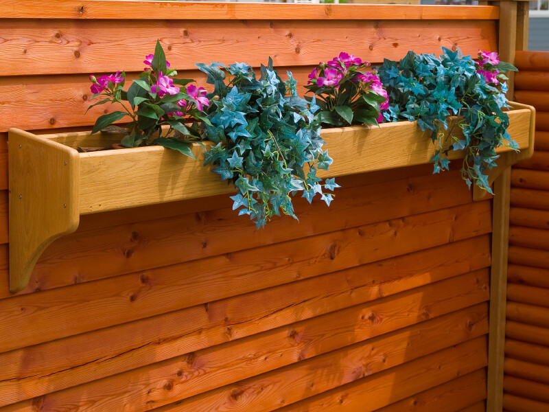 A tall cedar privacy fence with built-in window boxes with ivy and pretty purple flowers.