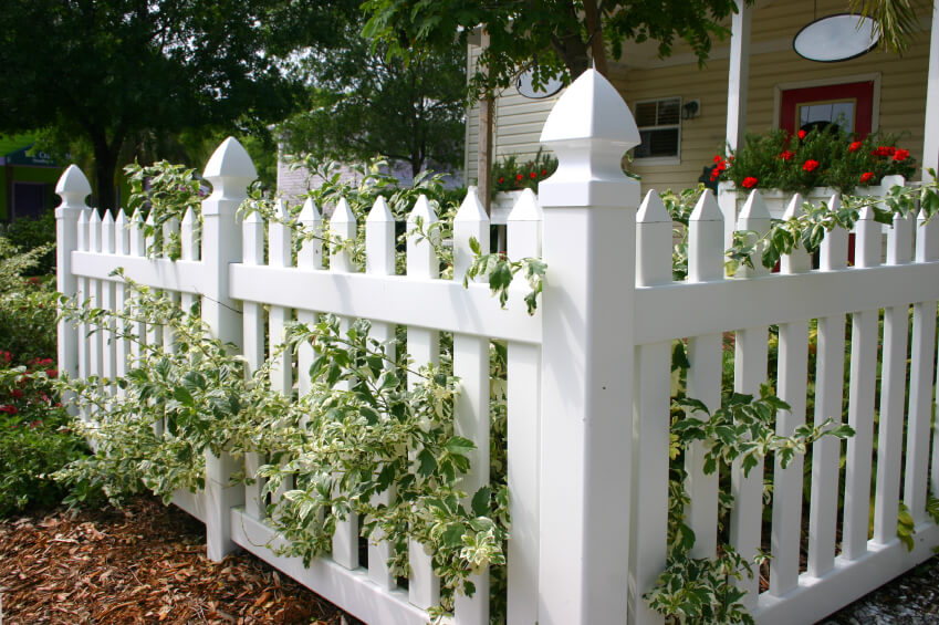 A Vinyl White Picket Fence In Front Of A Small Cottage With White Rimmed  Leaves And
